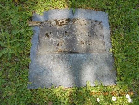 OLSON, ANTON - Marquette County, Michigan | ANTON OLSON - Michigan Gravestone Photos
