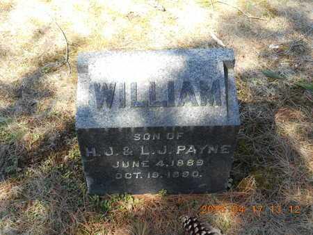 PAYNE, WILLIAM - Marquette County, Michigan | WILLIAM PAYNE - Michigan Gravestone Photos