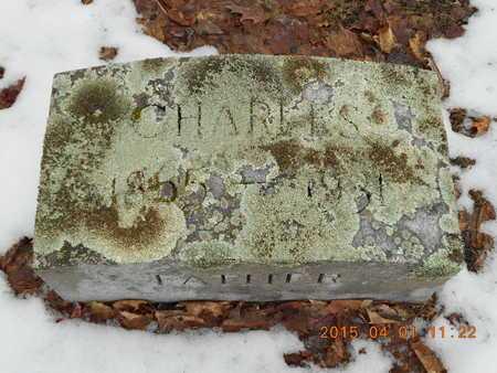PEARCE, CHARLES - Marquette County, Michigan | CHARLES PEARCE - Michigan Gravestone Photos
