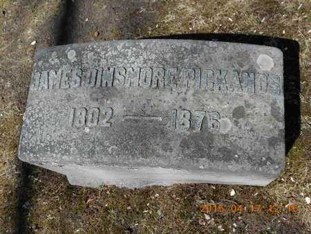 PICKANDS, JAMES DINSMORE - Marquette County, Michigan   JAMES DINSMORE PICKANDS - Michigan Gravestone Photos
