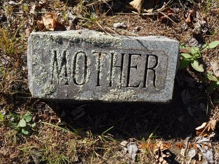 PRICE, ELIZABETH - Marquette County, Michigan   ELIZABETH PRICE - Michigan Gravestone Photos