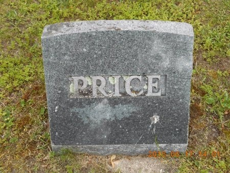 PRICE, FAMILY - Marquette County, Michigan | FAMILY PRICE - Michigan Gravestone Photos