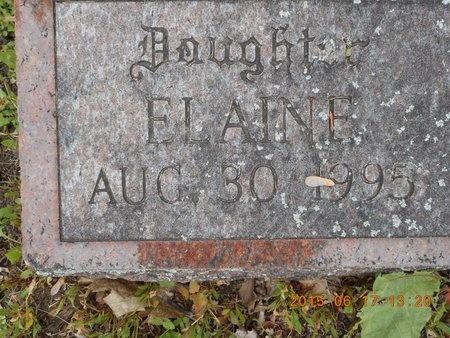 QUARTERS, ELAINE - Marquette County, Michigan | ELAINE QUARTERS - Michigan Gravestone Photos