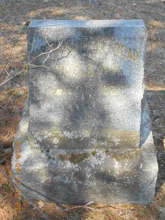 BRETT READ, ARTHUR - Marquette County, Michigan | ARTHUR BRETT READ - Michigan Gravestone Photos