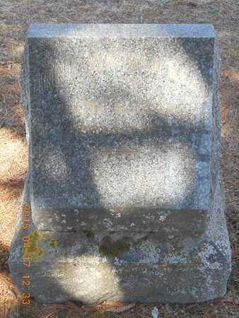 READ, ANNIE - Marquette County, Michigan | ANNIE READ - Michigan Gravestone Photos