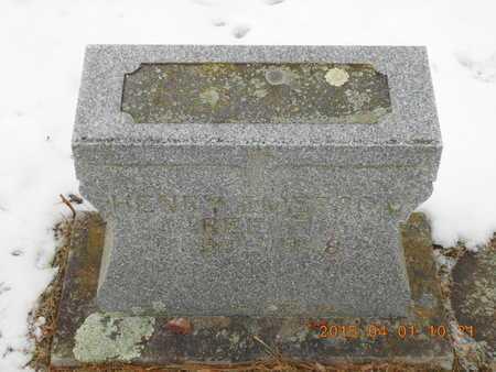 REECE, HENRY EMERSON - Marquette County, Michigan | HENRY EMERSON REECE - Michigan Gravestone Photos