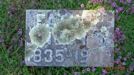 ROBERTS, ENOCH S. - Marquette County, Michigan | ENOCH S. ROBERTS - Michigan Gravestone Photos