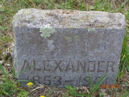 ROGERS, ALEXANDER - Marquette County, Michigan | ALEXANDER ROGERS - Michigan Gravestone Photos