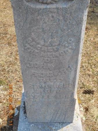 ROGERS, JOHN - Marquette County, Michigan | JOHN ROGERS - Michigan Gravestone Photos