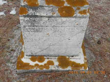 ROBINSON ROSS, AGNES S. - Marquette County, Michigan | AGNES S. ROBINSON ROSS - Michigan Gravestone Photos