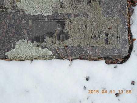 SANDBERG, CARRIE - Marquette County, Michigan | CARRIE SANDBERG - Michigan Gravestone Photos