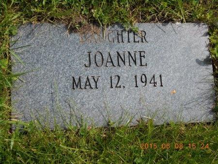 SCHILLINGER, JOANNE - Marquette County, Michigan | JOANNE SCHILLINGER - Michigan Gravestone Photos