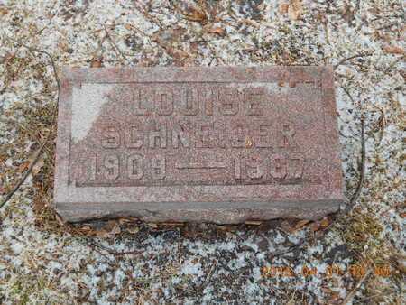 SCHNEIDER, LOUISE - Marquette County, Michigan   LOUISE SCHNEIDER - Michigan Gravestone Photos