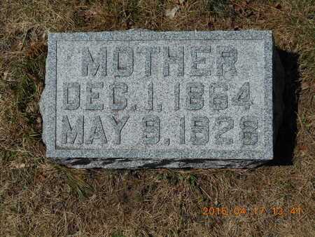 SCHRANDT, LENA N. - Marquette County, Michigan | LENA N. SCHRANDT - Michigan Gravestone Photos