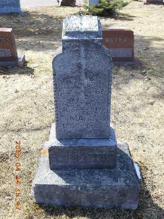 SCHWEITZER, MARY - Marquette County, Michigan | MARY SCHWEITZER - Michigan Gravestone Photos