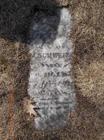 SCHWEITZER, ROSE - Marquette County, Michigan   ROSE SCHWEITZER - Michigan Gravestone Photos