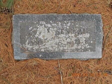 SENICAL, LOUIS - Marquette County, Michigan | LOUIS SENICAL - Michigan Gravestone Photos