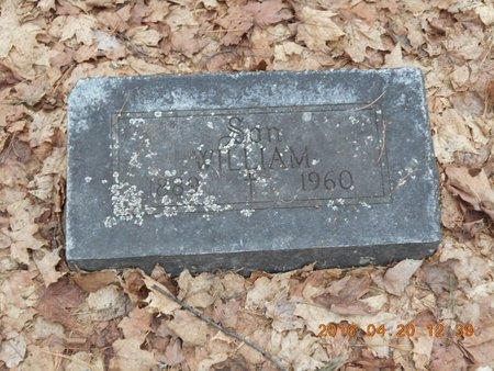 SENICAL, WILLIAM - Marquette County, Michigan | WILLIAM SENICAL - Michigan Gravestone Photos