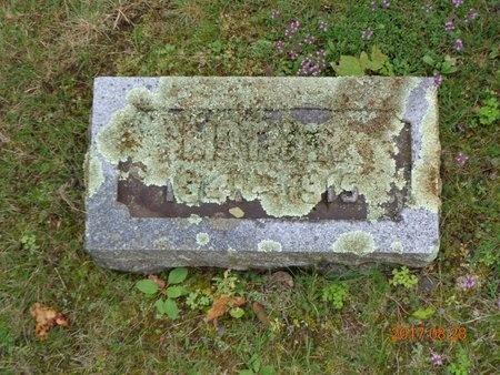 SKEWES, CHARLOTTA - Marquette County, Michigan   CHARLOTTA SKEWES - Michigan Gravestone Photos