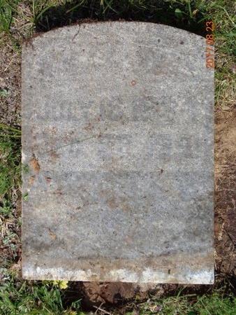 SKEWES, WILLIAM - Marquette County, Michigan | WILLIAM SKEWES - Michigan Gravestone Photos