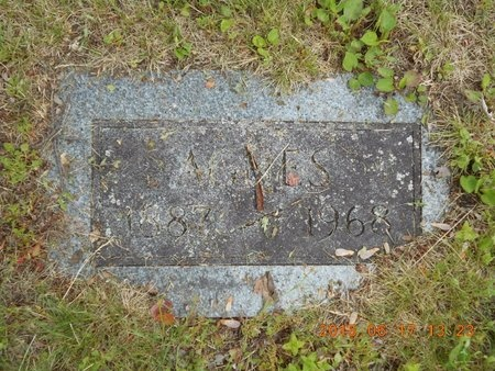 SMITH, AGNES - Marquette County, Michigan | AGNES SMITH - Michigan Gravestone Photos