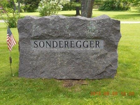 SONDEREGGER, FAMILY - Marquette County, Michigan   FAMILY SONDEREGGER - Michigan Gravestone Photos