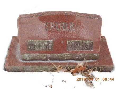 SPURR, CAPT. W.O. BETTS - Marquette County, Michigan | CAPT. W.O. BETTS SPURR - Michigan Gravestone Photos