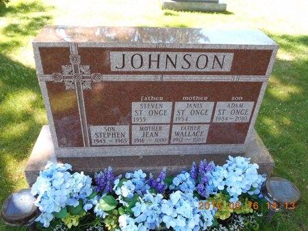 JOHNSON, WALLACE C. - Marquette County, Michigan | WALLACE C. JOHNSON - Michigan Gravestone Photos