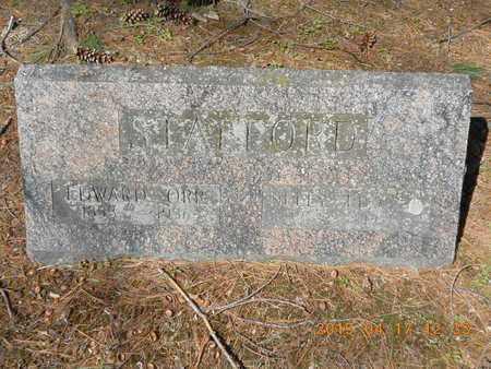 STAFFORD, EDWARD ORR - Marquette County, Michigan | EDWARD ORR STAFFORD - Michigan Gravestone Photos