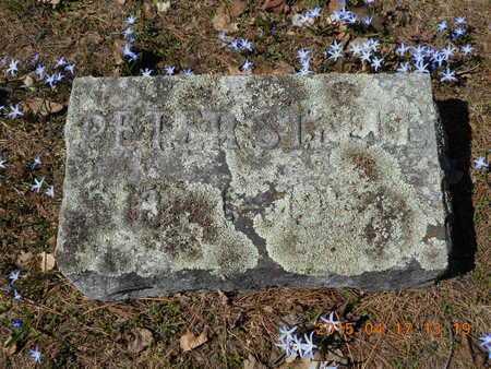 STEELE, PETER - Marquette County, Michigan | PETER STEELE - Michigan Gravestone Photos