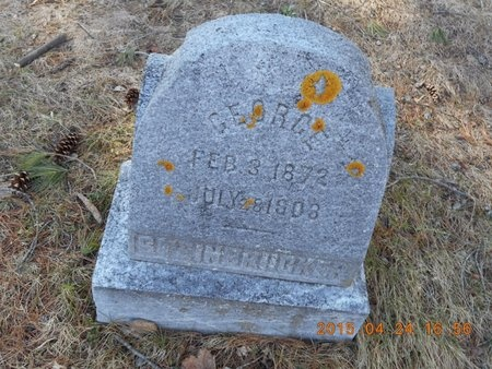 STEINBRUCKER, GEORGE - Marquette County, Michigan | GEORGE STEINBRUCKER - Michigan Gravestone Photos
