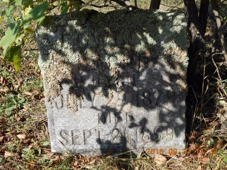 STONE, EDWIN G. - Marquette County, Michigan | EDWIN G. STONE - Michigan Gravestone Photos