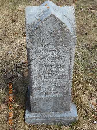 ST.ONG, FAMILY - Marquette County, Michigan | FAMILY ST.ONG - Michigan Gravestone Photos