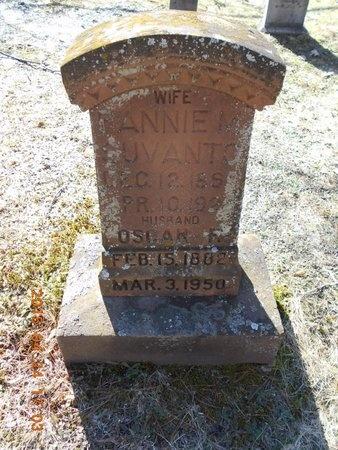 SUVANTO, ANNIE M. - Marquette County, Michigan | ANNIE M. SUVANTO - Michigan Gravestone Photos