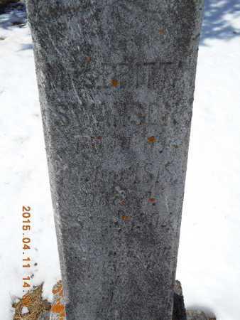 SWANSON, MRS. BRITTA - Marquette County, Michigan   MRS. BRITTA SWANSON - Michigan Gravestone Photos
