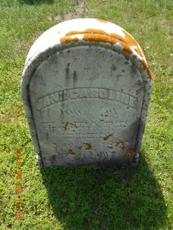 HOWARD TAFT, JANE CAROLINE - Marquette County, Michigan | JANE CAROLINE HOWARD TAFT - Michigan Gravestone Photos