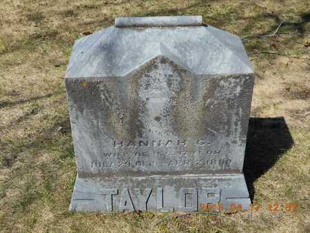 TAYLOR, HANNAH G. - Marquette County, Michigan | HANNAH G. TAYLOR - Michigan Gravestone Photos