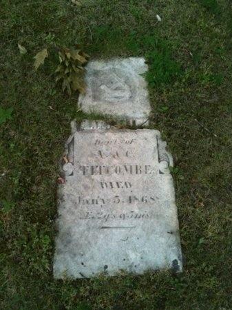 TITCOMBE, MARY ELLEN - Marquette County, Michigan | MARY ELLEN TITCOMBE - Michigan Gravestone Photos