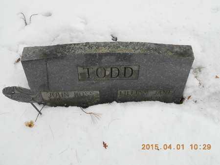 TODD, LILLIAN JANE - Marquette County, Michigan   LILLIAN JANE TODD - Michigan Gravestone Photos
