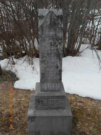 TRIGGS, FAMILY - Marquette County, Michigan | FAMILY TRIGGS - Michigan Gravestone Photos