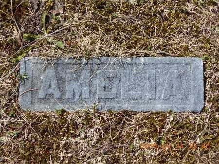 TUCH, AMELIA - Marquette County, Michigan   AMELIA TUCH - Michigan Gravestone Photos