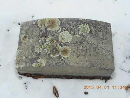 STEVENS TUCKER, ALMA - Marquette County, Michigan | ALMA STEVENS TUCKER - Michigan Gravestone Photos