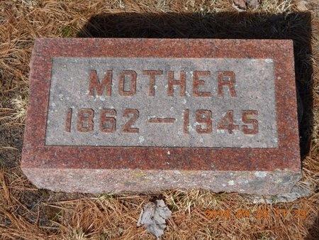 VINCENT, ELLEN - Marquette County, Michigan | ELLEN VINCENT - Michigan Gravestone Photos