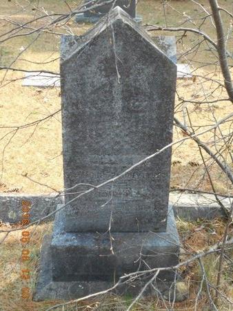 VINCENT, FAMILY - Marquette County, Michigan   FAMILY VINCENT - Michigan Gravestone Photos