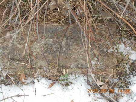 WARD, VIOLA W. - Marquette County, Michigan | VIOLA W. WARD - Michigan Gravestone Photos