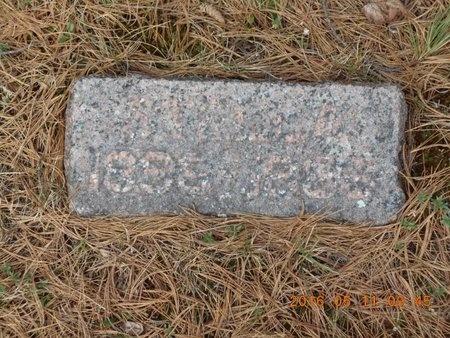WELLET, STELLA - Marquette County, Michigan   STELLA WELLET - Michigan Gravestone Photos