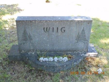 WIIG, FAMILY - Marquette County, Michigan | FAMILY WIIG - Michigan Gravestone Photos