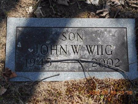 WIIG, JOHN W. - Marquette County, Michigan | JOHN W. WIIG - Michigan Gravestone Photos