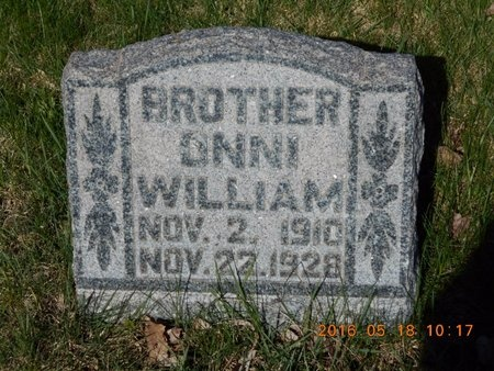 WIIG, ONNI WILLIAM - Marquette County, Michigan | ONNI WILLIAM WIIG - Michigan Gravestone Photos