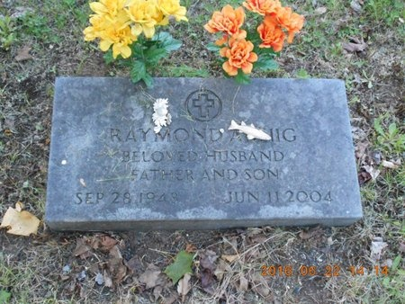 WIIG, RAYMOND A. - Marquette County, Michigan | RAYMOND A. WIIG - Michigan Gravestone Photos